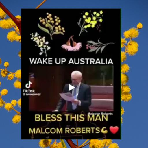 Malcolm Roberts_wattle